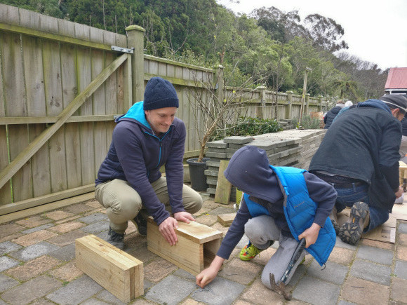 How To Build A Trapping Tunnel Predator Free Wellington